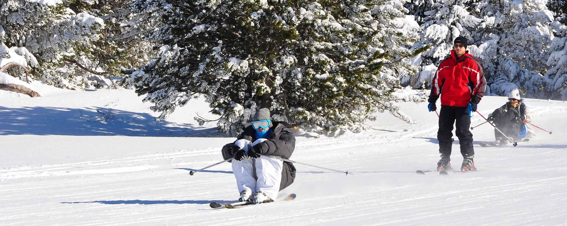 Les skieurs © F. Berlic