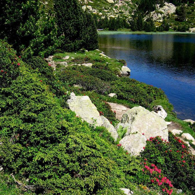Nombreux étangs supérieurs des Bouilouses Pyrénées Cerdagne