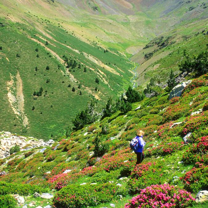 Massif du Puigmal en Pyrénées Cerdagne