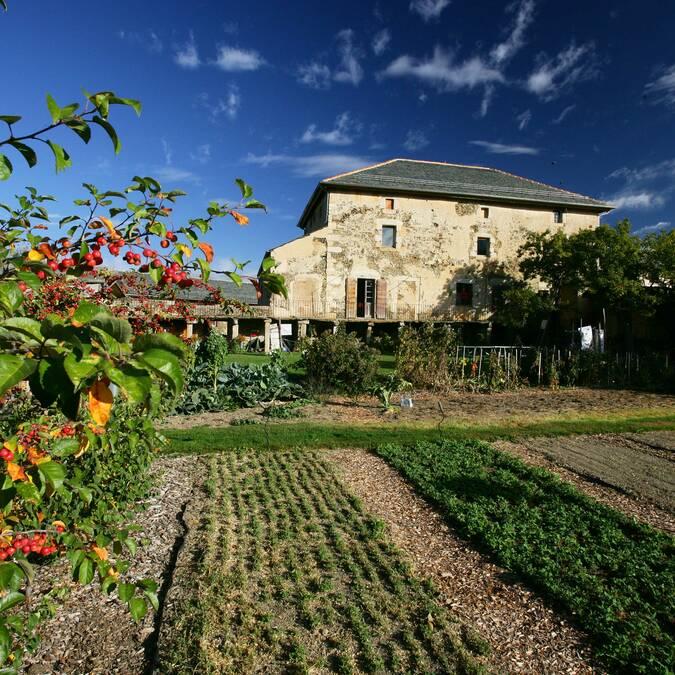 Le potager du musée Cerdagne