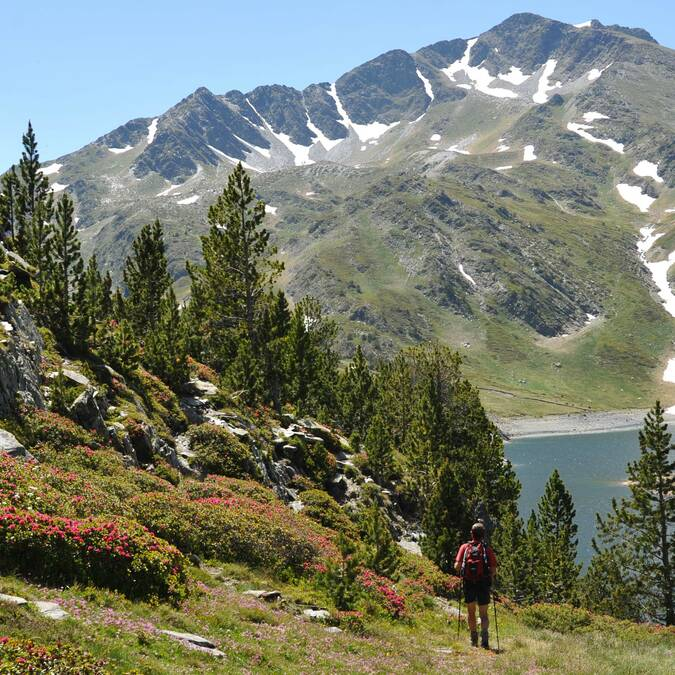 Wandelen in de pyrenee n pyr n es cerdagne tourisme - Office de tourisme bergen ...